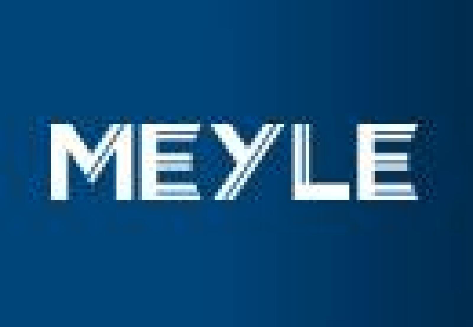 Querlenker Vorderachse MEYLE 5146100010 Lagerung